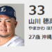 【2020プロ野球】沖縄出身の選手が多いぞ!まとめてみたぞ!